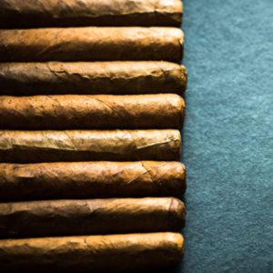 1-day PYA GUEST Cigar